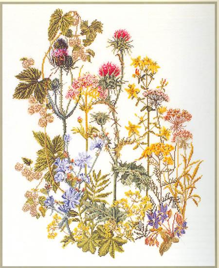и Полевые цветы ТG821